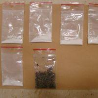 Kolejne zatrzymania posiadaczy narkotyków