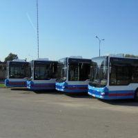 Od lutego zmiany w kursowaniu porannych autobusów