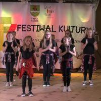 VIII Festiwal Kultury Chodów 2018 (film)