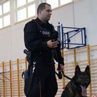 Policyjny pies uratował zaginioną
